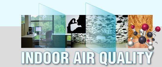 Indoor Air Quality Mold Inspections Iaq Graphic
